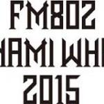 MINAMI WHEEL2015の開催日程はいつ?出演者やタイムテーブルについても調べた。今年はどんなアーティストが出演するのか楽しみ
