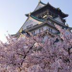 大阪城公園の桜や梅の見頃はいつ?アクセスや安い駐車場も調べてみた!